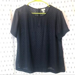 a new day   Navy   Sheer   Blouse   Short Sleeve